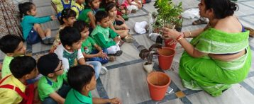 Plantation Drive & Green Day Unveiled